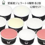 ショッピングアイスクリーム アイスクリーム ジェラート 12個セット 愛媛産ジェラート6種類 詰め合わせ 暑中見舞い ギフト プレゼント お祝い お中元