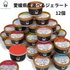 アイスクリーム ジェラート 12個 詰め合わせ 愛媛産ジェラート20種類から選べる お中元 暑中お見舞い ギフト プレゼント お祝い