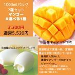 訳あり アイス アイスクリーム  御中元 マンゴー スイーツ ギフト ミルク&マンゴーシャーベット1000ml×2個入り