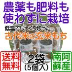 緑米の煎り玄米もち(5個入)x2袋 ヘイケボタルが舞う田んぼで獲れた緑米を使用(農薬不要栽培:無農薬、肥料不要栽培:無肥料) 送料無料