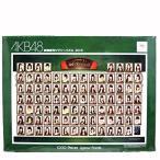 AKB48 劇場壁写ジグソーパズル 2015 1000ピース 福袋特典