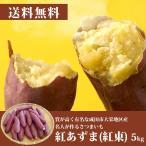 紅あずま(紅東) 5kg(15〜20本)