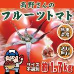 トマト 高野さんのフルーツトマト サイズ不選別 約1.7kg 栃木県 送料無料