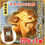 とちっこ漬け 220g 元気村のお漬物 漬物 大根 国産野菜 栃木県産 送料無料