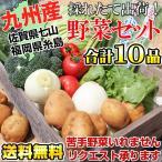 ショッピングさい 野菜セット 九州新鮮やさい詰め合せ10品 佐賀県七山産&福岡県糸島産(送料無料)・糸島野菜が名医の太鼓判で紹介されました