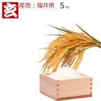 福井のお米 28年 福井産 コシヒカリ 玄米5kg送料無料 ※精米選択可 (448)
