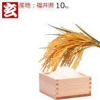 福井のお米 28年 福井産 コシヒカリ 玄米10kg 送料無料 ※精米選択可 (449)