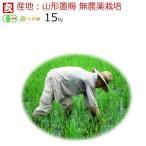 無農薬玄米 15kg 送料無料 JAS有機認証 山形県産 無農薬つや姫  産年:令和2年 生産者:小林亮 ※精米選択可 ※精米選択可