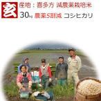 減農薬 玄米 30kg 送料無料 福島県会津喜多方コシヒカリ 農薬5割減 生産農家:風間 勝氏  産年:令和2年