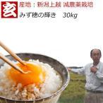 父の日プレゼント 減農薬 玄米 30kg 送料無料 特別栽培認証 新潟産 みずほの輝き 農薬5割減 産年:令和2年 生産者:辻勉氏