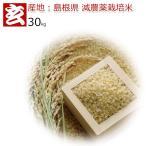 新米28年産 島根県 つや姫 減農薬 玄米 30kg 送料無料 (432)