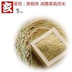 新米28年産 島根県 つや姫 減農薬 玄米 5kg 送料無料 (415)