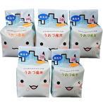 精米無洗米 JAうおづ産コシヒカリ ご当地キャラクターミラたんの「キューブ米」1.5kg (2合袋:300g×5個) 令和元年度産