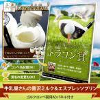 牛乳屋さんの贅沢ミルク&エスプレッソプリン 引換券 (ビンゴ 景品 ゴルフコンペ)