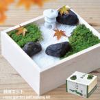 ビンゴ 景品 セット 小さな日本庭園を愛でる苔庭キット