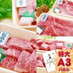 選べる松阪牛(焼肉用600g しゃぶすき用600g サイコロステーキ用540g) 引換券 A3パネル