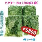 パクチー 業務用 2kg 生野菜 税込 クール便 鮮度保持フィルム包装 トレファームの砂栽培育ちで元気な野菜です!