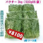 パクチー 業務用 3kg 生野菜 税込 クール便 鮮度保持フィルム包装 トレファームの砂栽培育ちで元気な野菜です!