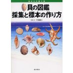 貝の図鑑採集と標本の作り方 海からの贈り物