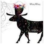 メガマソ/white,white(通常盤)(CD)