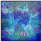 AYABIE/流星(初回限定盤B/CD+DVD ※Lilia Music Clip収録)(CD)