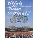 ウルフルズ/OSAKA ウルフルカーニバル ウルフルズがやってくる!ヤッサ09FINAL!!(DVD)