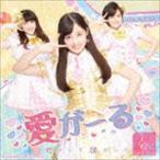 Rev.from DVL/愛がーる/君がいて僕がいた(Type-B/アイカツコラボver.)(CD)