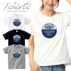 送料無料 Tシャツ NBA/MLB/supreme/stussy/NY/LA/USA/SPORTS/yankees/nets/knicks