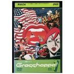 Grasshoppa! Vol.1 加瀬亮 尾野真千子 DVD レンタル版 レンタル落ち 中古 リユース