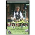 DVD 先生と迷い猫 イッセー尾形 染谷将太 北乃きい レンタル落ち RR16407