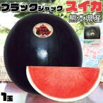 ブラックジャック スイカ 1玉 熊本