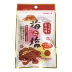 梅干し お漬け物  食品ギフト 紀州産乾燥練り梅 梅と塩 4210101