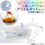 クロイソス工芸茶&アリエルポットセット(3個箱セット / オーバーザレインボウ+お勧め工芸茶2珠) プレゼント