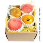 ( 産地直送 / ホシフルーツ ) おまかせ旬のフルーツBOX B ギフト プレゼント 内祝