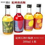 ( 株式会社 濱田 ) 紀州南高梅 紀州石神の梅酒 飲み比べセット 300ml 4本