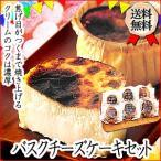 送料無料 北海道 バスクチーズケーキ お取り寄せ 記念日 スイーツ デザート クリームチーズ 生クリーム