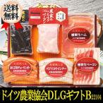 送料無料 北海道  札幌バルナバハム ドイツ農業協会DLGギフトB 詰合せ ハム ソーセージ  贈り物 記念日