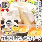 送料無料 北海道 牧場の淡雪とほっかほかチーズセット 記念日 お取り寄せ チーズフォンデュ タルト