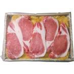 送料無料 内祝 お中元 お歳暮 父の日 母の日 敬老の日 「京都モリタ屋」京丹波高原豚ロース味噌漬け のし可