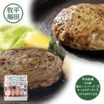 送料無料平田牧場 日本の米育ち三元豚ハンバーグ&ロールステーキギフト HBHSF19-9 三元豚 ハンバーグ ロール ステーキ とびうおだし 詰め合わせ セットプレ