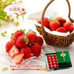 お歳暮 ギフト 果物 フルーツ 福岡 博多あまおう 9〜18粒 (計約350g) いちご イチゴ 贈り物 お取り寄せグルメ 送料無料 IW20W051 高級 御歳暮