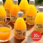 2020 送料無料 和歌山 伊藤農園 和歌山柑橘ジュース 180ml×10本 SK1183 みかん きよみ いよかん はっさく あまなつ お取り寄せ 特産 手土産 お祝い 詰め