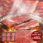 ギフト プレゼント 肉 国産 神戸牛 松阪牛 食べ比べ セット 計480g 兵庫 和牛 牛肉 焼肉 取り寄せ 冷凍 手土産 誕生日 食べ物 SK1694 送料無料 高級