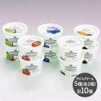 ギフト アイス 島根 奥出雲 VANAGA アイスクリーム 5種類 計10個 プレゼント スイーツ お取り寄せ 食べ物 洋菓子 贈り物 SK1793 送料無料 高級 母の日 2021