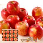 お歳暮 ギフト 早割 果物 青森県 サンふじりんご 3kg リンゴ フルーツ 青果 くだもの お取り寄せ プレゼント 贈り物 送料無料 SN6003-010030 高級 御歳暮