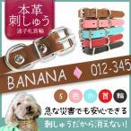犬 首輪 おしゃれ ペット用品 かわいい犬の首輪