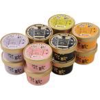 ショッピングアイスクリーム アイスクリーム 詰め合わせ 乳蔵 北海道アイスクリーム(プレミアムバニラ入り)  110004