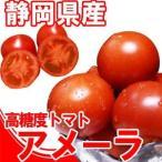 『高糖度トマト』アメーラ1kg