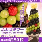 ショッピングバースデーケーキ 果物 ギフト サプライズプレゼント ぶどうタワー バースデーケーキ 誕生日 プレゼント カットフルーツ盛り合わせ お祝いフルーツブーケ ハロウィン 送料無料