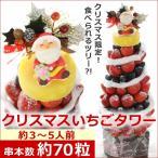 クリスマス予約 クリスマス限定いちごタワー 果物ツリー フルーツ 盛り合わせ 苺 お祝い 出産祝い フルーツブーケ 宅配 送料無料 hp
